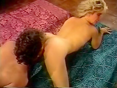 right! Teen babe gets fucked by mature lesbian strapon sorry, that has interfered