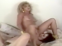 Poonie Lesbians - Creekboy