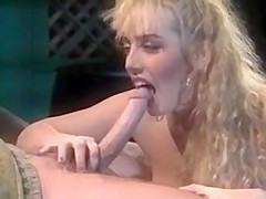 Adult pornstar sandra scream