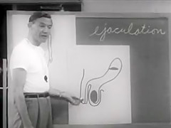 Vintage Sex Education - (1957) As Boys Grow