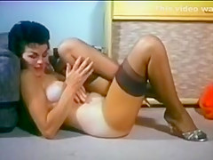SWEET LITTLE PUSSYCAT - vintage nylons tease stockings