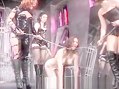 Busty Pamela acts like a good dog for her three mistresses