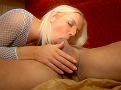 House Of Ass - Barbara Summer