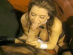 Cirque du Sex