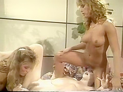 The Golden Age Of Porn - Erica Boyer