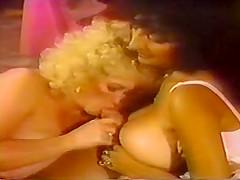 Tit Banging Fever