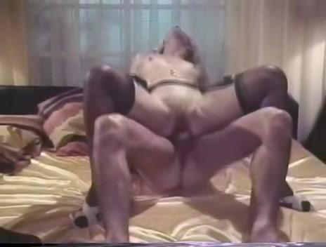 dvd free gay porn