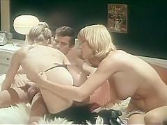 Vintage lingerie clips 1970's