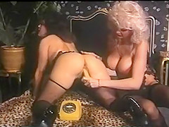 Dolly Buster's On Line Story (1991)
