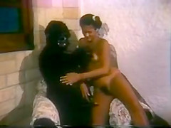 The vintage brasil porno just