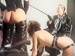 Phalo Crest (1987)
